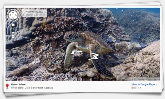 Google Ocean View